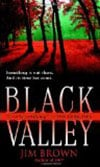 Book Cover for Black Valley